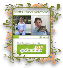 Scott's Cancer Treatment Fund