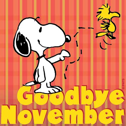 VintageVelvets...: Goodbye November.. Hello December