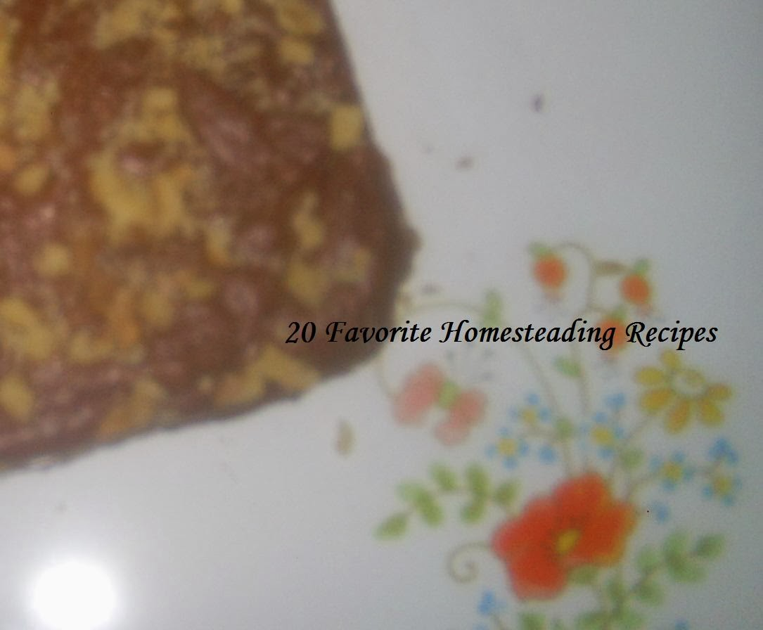 20 Favorite Homesteading Recipes Amazon Link