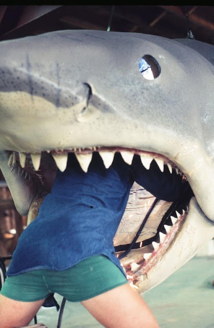 jaws behind the scenes
