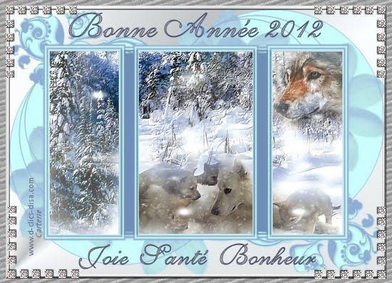 carte-bonne-annee-2012-meilleurs-voeux-2012-18-d-clics-disa