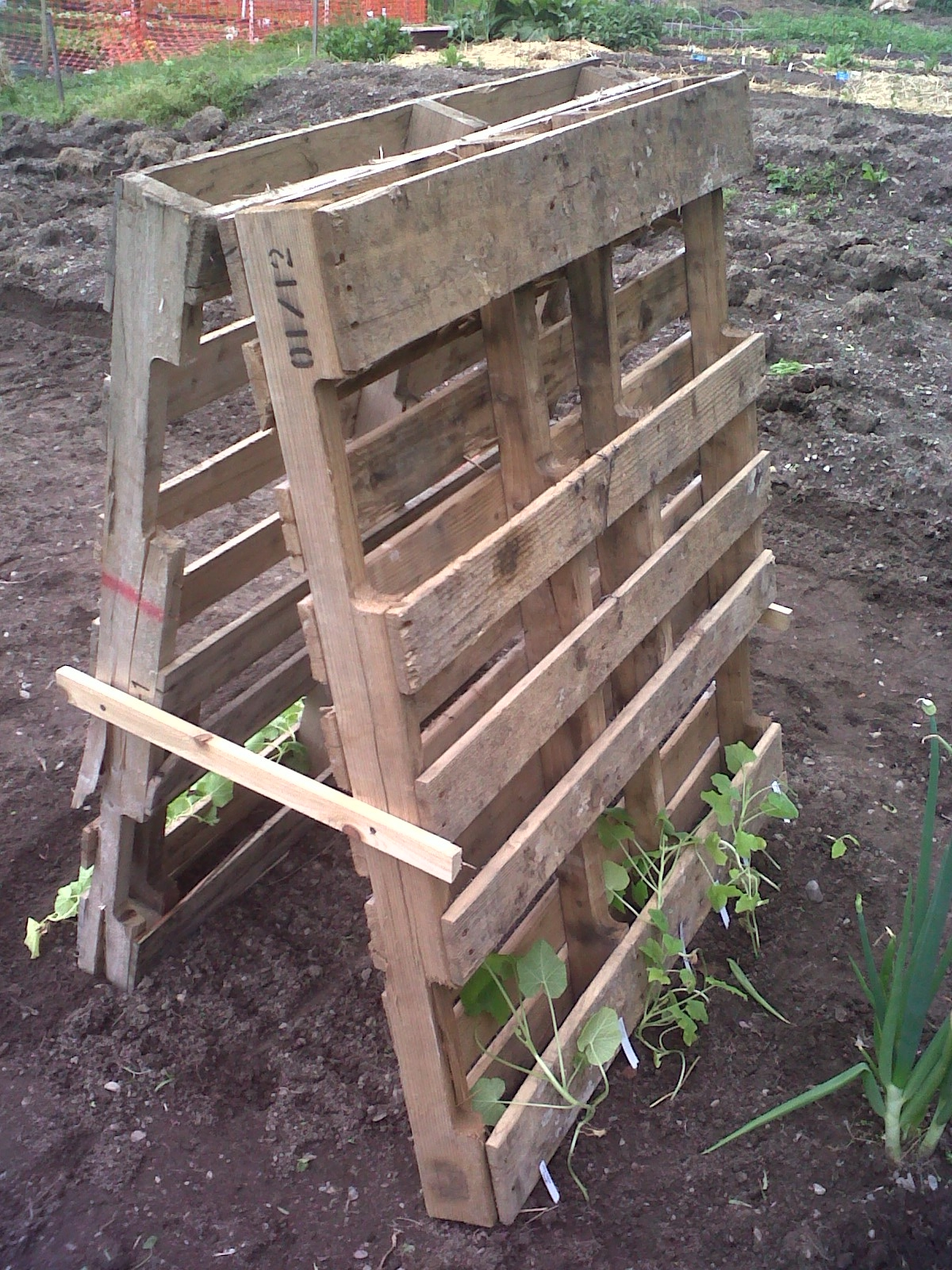 Preppy pink crocodile tutorial how to build a squash or for How to build a house out of wood pallets