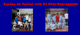 https://dl.dropboxusercontent.com/u/44858821/CURSO%2014-15/futbol-sala.jpg