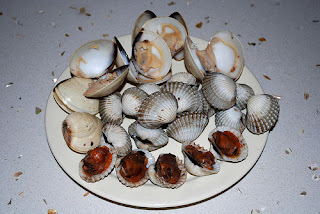 Cooked Blood Cockles and Clams