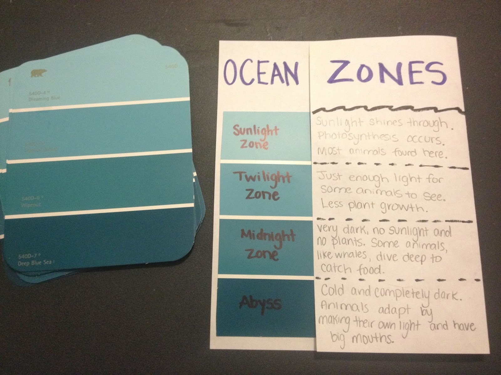 Learning by Doing Oceans – Ocean Zones Worksheet