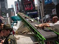 Funcionários do Departamento de Vida Selvagem dos EUA colocam peças de marfim em máquina trituradora na Times Square, em Nova York, na sexta (19) (Foto: Andrew Burton/Getty Images/AFP)