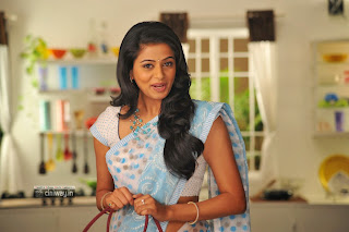 Priyamani-Stills-in-Saree