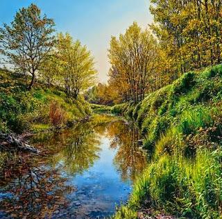 fotos-de-paisajes-de-la-naturaleza-pintados-en-oleo