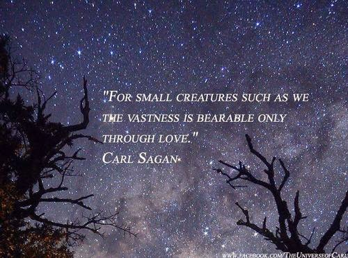 Carl Sagan Love Quote Amazing Top 14 Carl Sagan Quotes  Scorpio Quotes