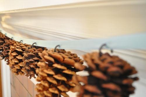 Decorazioni Natalizie Pigne.Decorazioni Con Le Pigne Per Natale Blossom Zine Blog