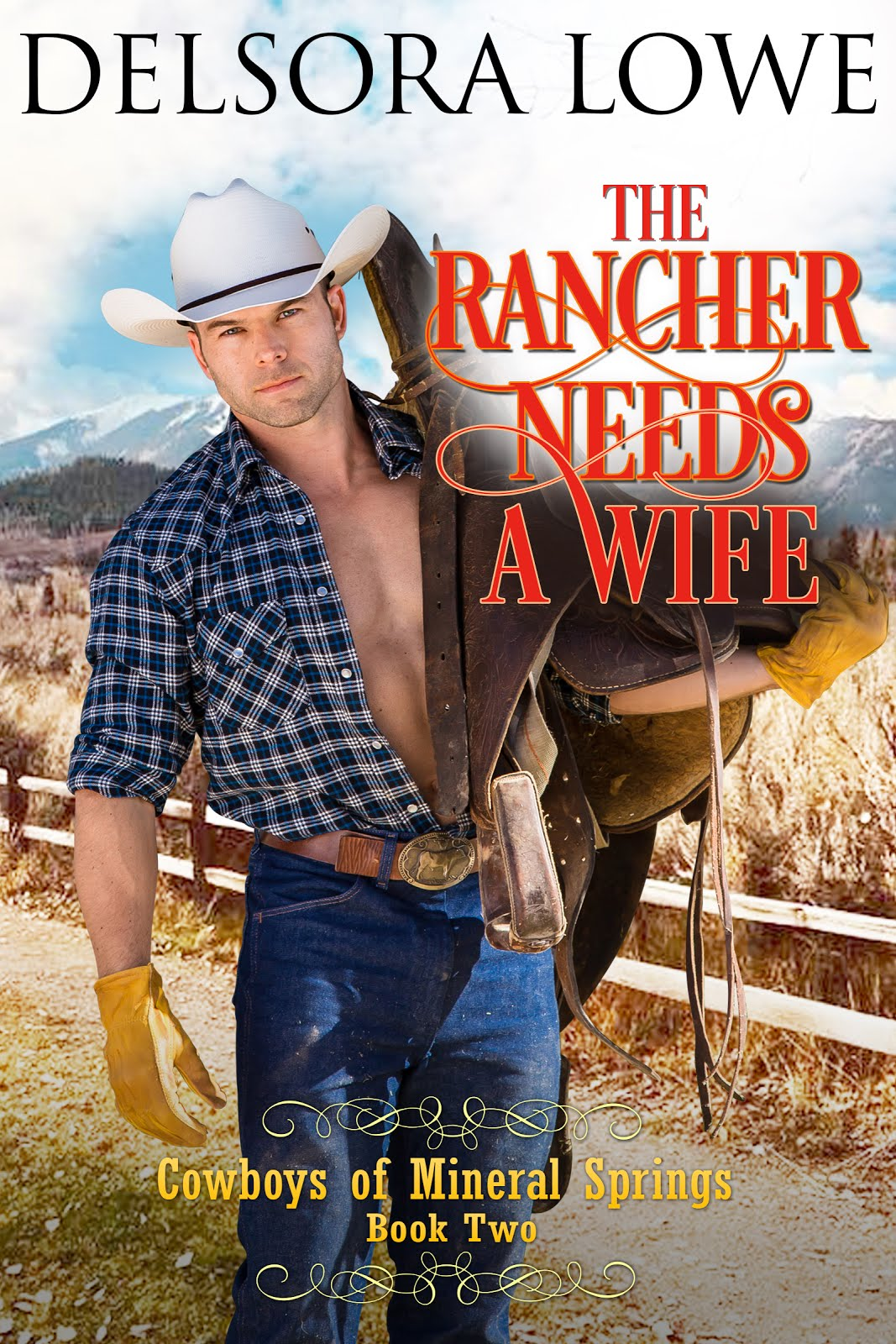 Book Two, Cowboys of Mineral Springs