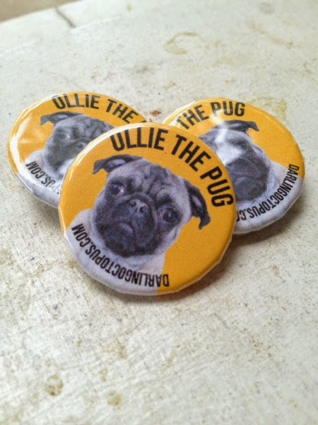Ollie Buttons by Karen Guard