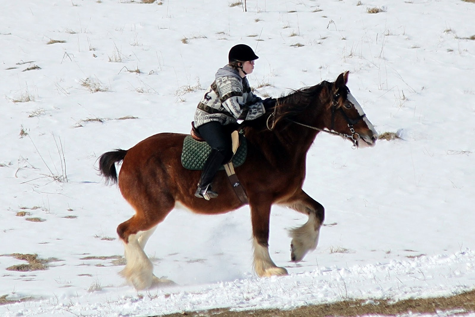 Riding a Clydesdale in the snow can be fun