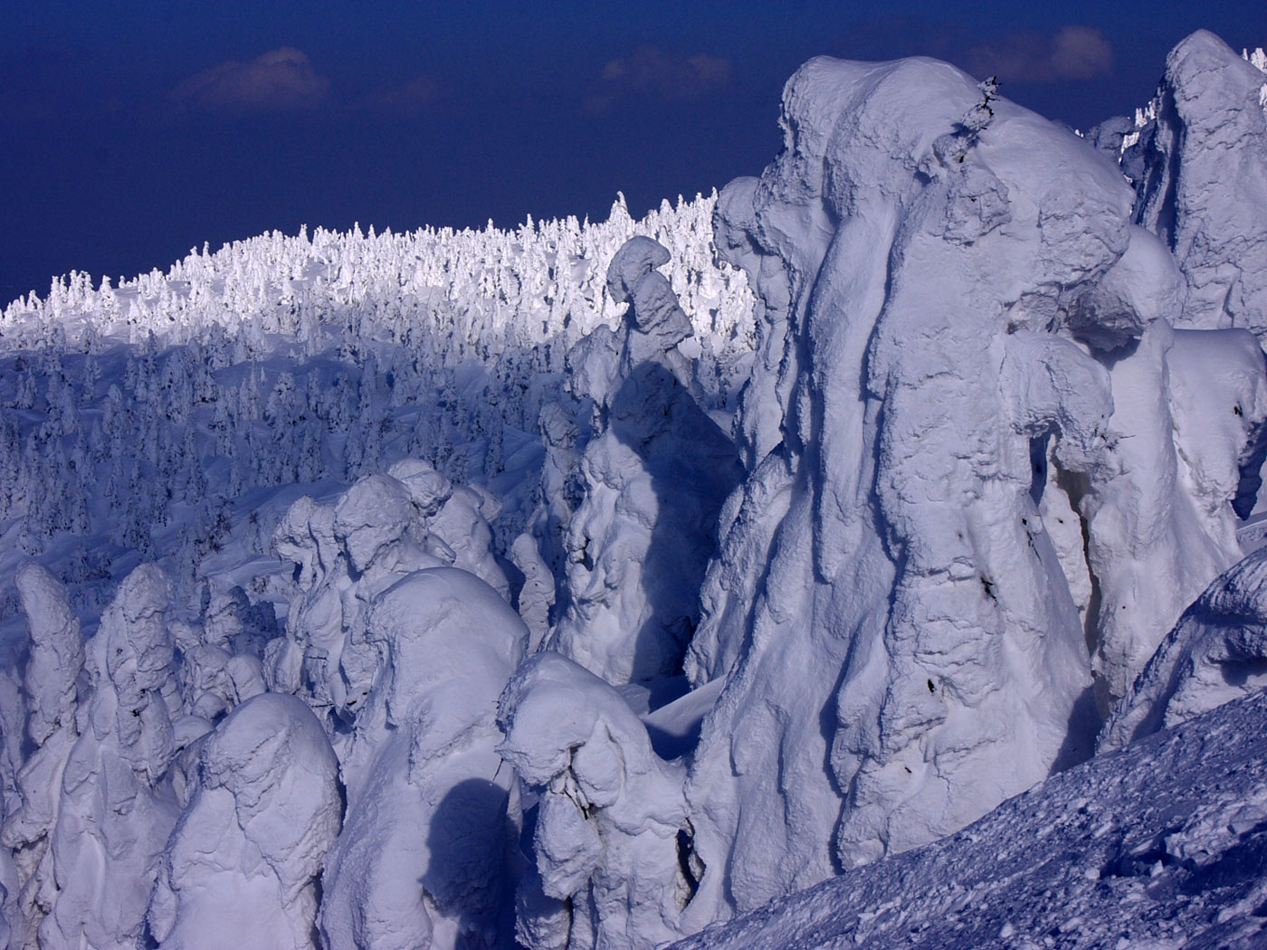 Chella S Musings Snow Monsters Of Japan