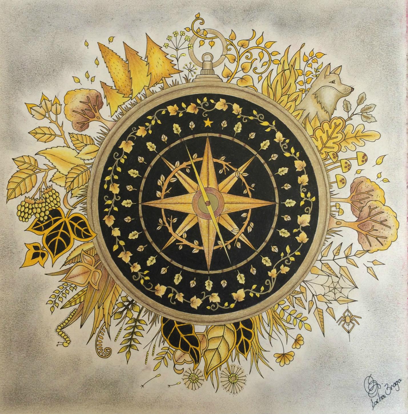 A bússola de ouro