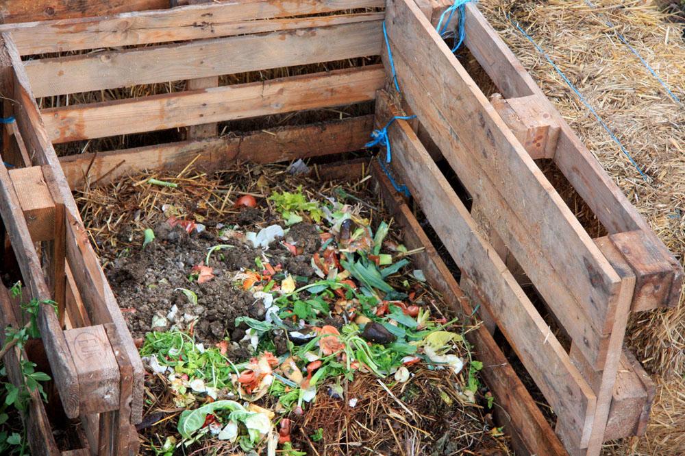 C mo hacer compost en casa ecosiglos for Como se disena una casa