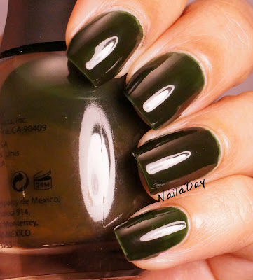NailaDay: Finger Paints Tough Art to Follow