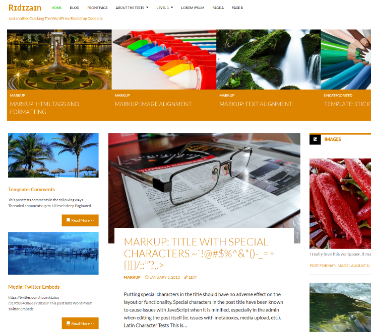 Ridizain Free WordPress theme 2014