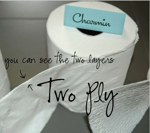 THOUGHTS OF A SOMALI-CANADIAN GIRL: CHEAPSKATE TIP #3: TOILET PAPER