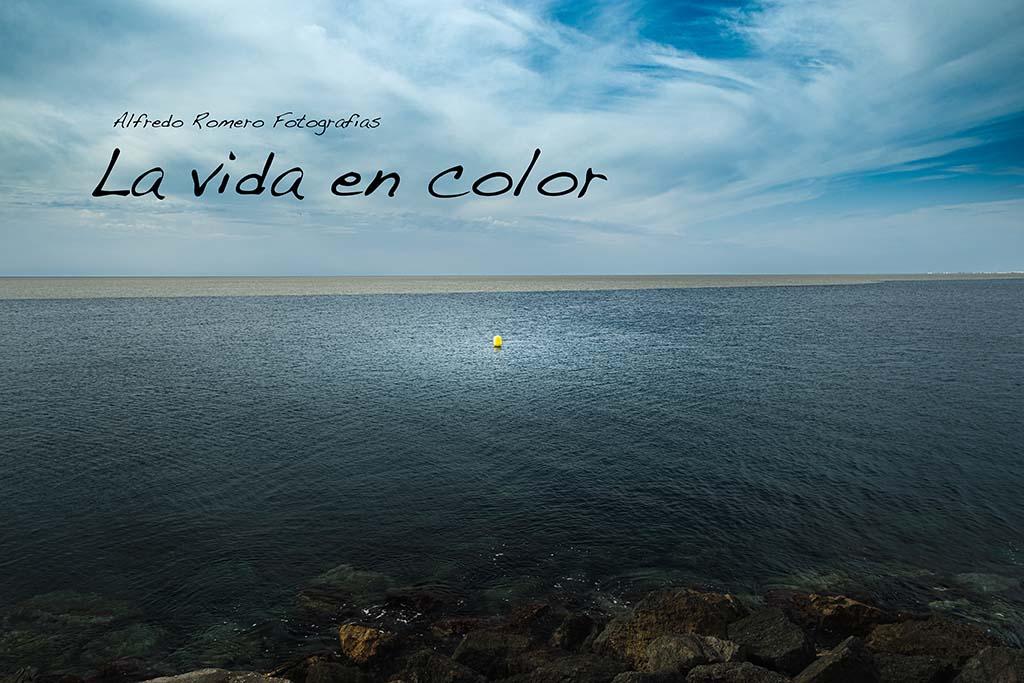 La vida en color (Life in color)