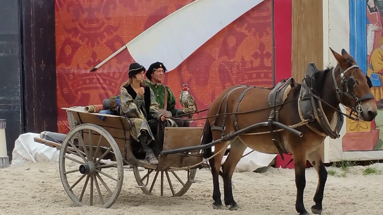 """""""François 1er, Roy chevalier"""" de Pégase prod"""