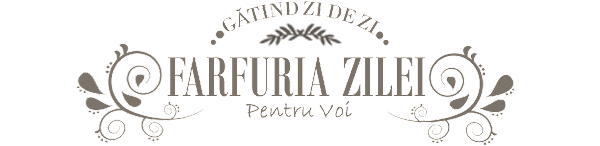 Farfuria Zilei
