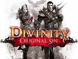Divinity Original Sin PC Game