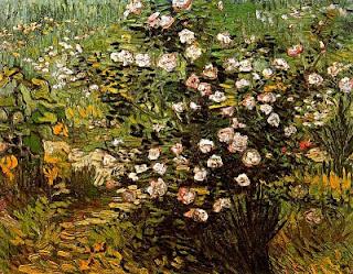 Roser en flor (Vincent Van Gogh)