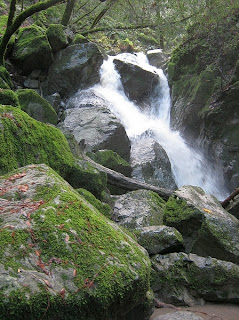 Sonoma Creek Falls at Sugarloaf Ridge State Park