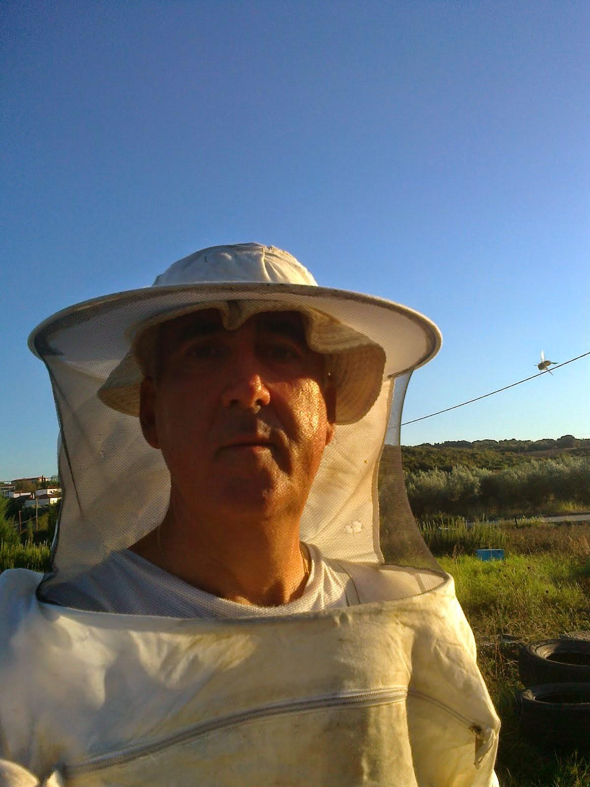 Καρακωστίδης  Νίκος     Μελισσοκόμος    Παραγωγός  (  EL 73 / 462  )