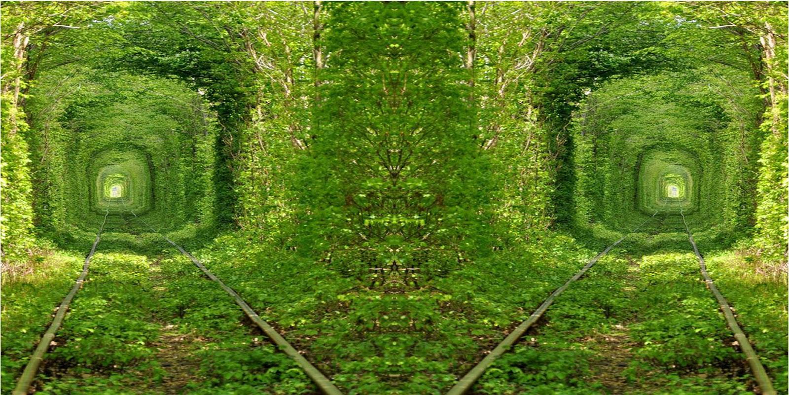 Most Inspiring Wallpaper High Resolution Widescreen - beautiful-green-tunnel-nature-background-wallpaper-for-laptop-widescreen  Pictures_6178100.jpg