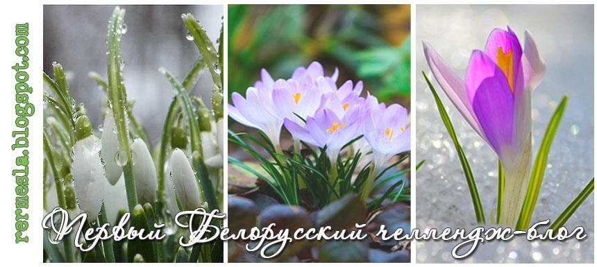 1-ый в Беларуси челлендж-блог