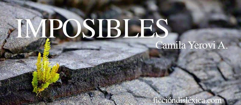 imagen de una roca en la que crece una planta con el título imposibles de la autora camila yerovi avendañi para el blog ficciondislexica.com