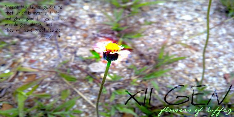 Flowers Of Huffaz