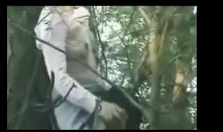 Quay lén làm tình trong rừng (18+) | hay88.com
