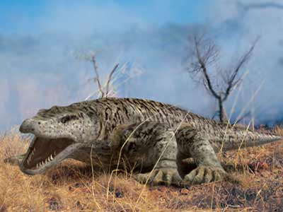 essay on what killed the dinosaurs