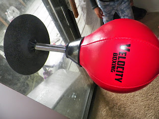 Velocity_Boxing_Punching_Ball.jpg