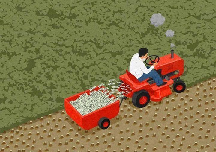 Menghancurkan Hutan Demi Uang gambar realita
