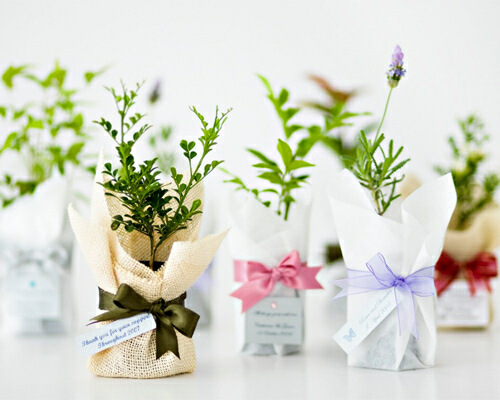 The Wedding Gurus: DIY Wedding Favour Ideas