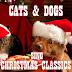 Χριστουγεννιάτικα τραγούδια!