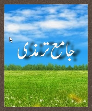 Jama-e-Tirmizi Compelet In Urdu