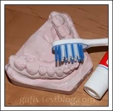 Zahnpflege ist wichtig!