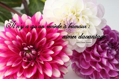 citation-fleur