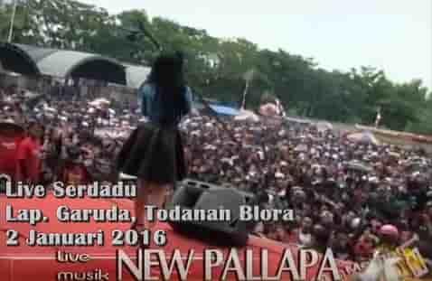New Pallapa terbaru 2016 live Doplang Blora 2 Januari