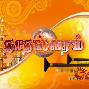 Nadhaswaram Serial Wons Guinness Award