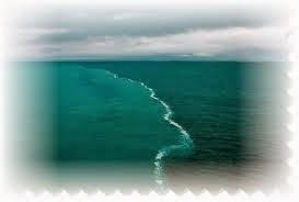 Pertemuan Dua Lautan Ilmu