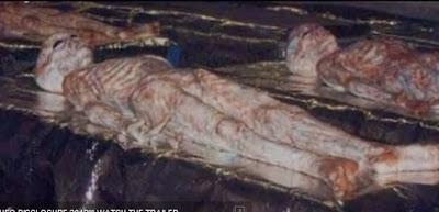 cuerpos de extraterrestres en camillas