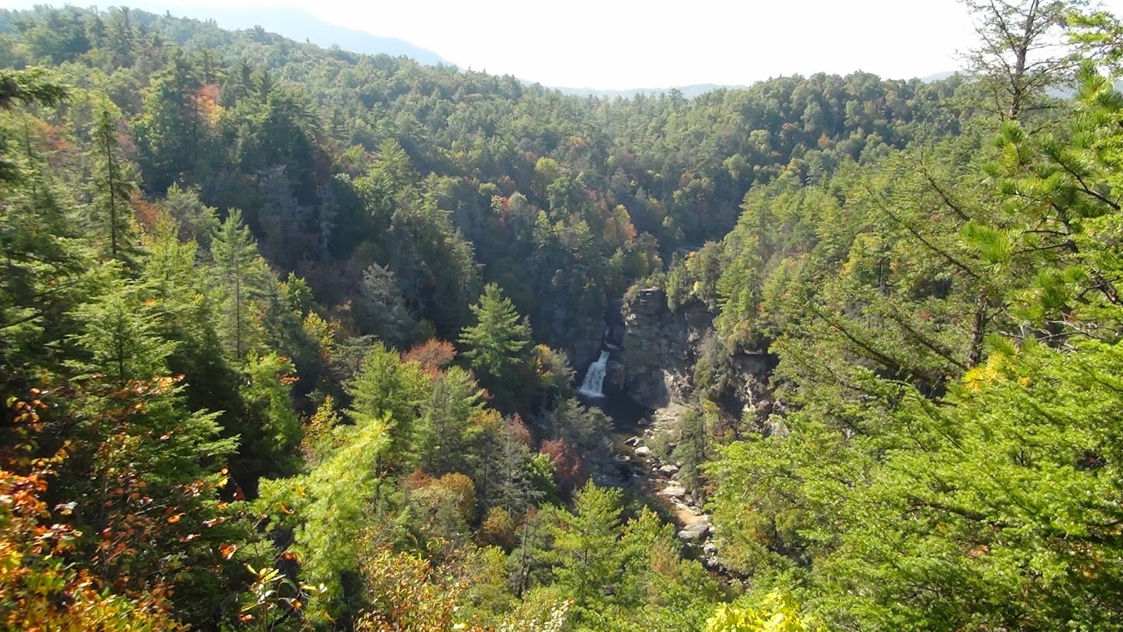 linville falls black personals Find and contact local party venues in linville falls, nc with pricing and availability for your party event  white horse black mountain is a 4400 sq ft music .