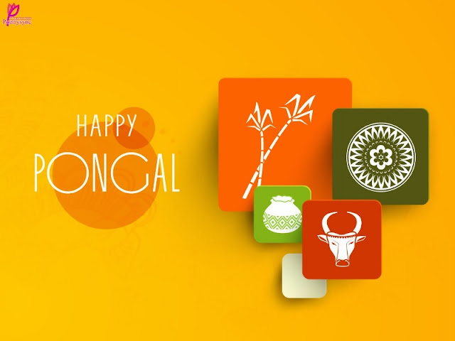 Happy Pongal HD Wallpaper for facebook