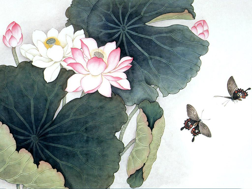 Lotus Flower Art Nhim: Lotus_my ...